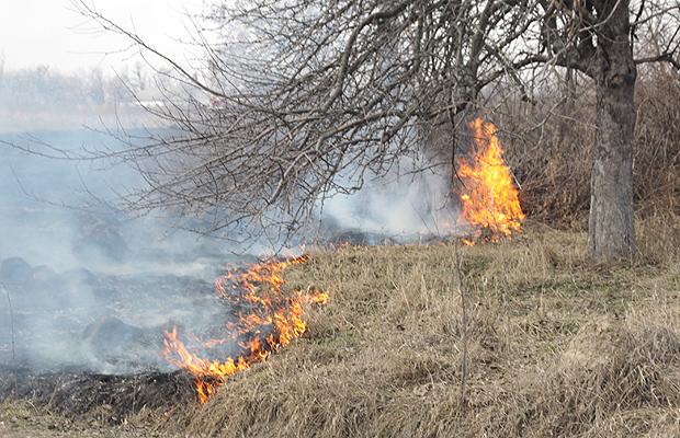 За спалювання сухої трави можна позбавитися до двох тисяч гривень