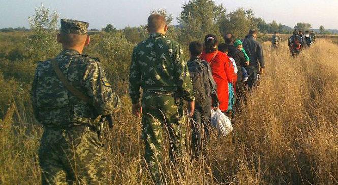 """Буковинські """"підприємці"""" переправляли нелегалів до країн ЄС"""