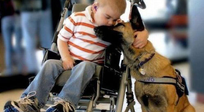 3 грудня – Міжнародний день людей з інвалідністю