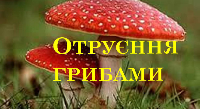 Мешканець села Купка отруївся грибами
