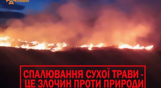 Збільшується ризик виникнення пожеж через спалювання сухої трави