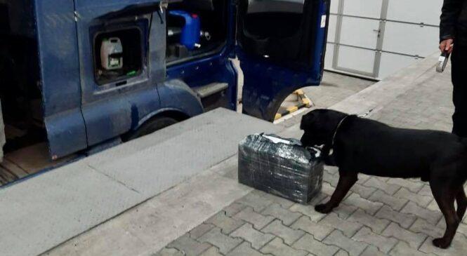 На ПП«Порубне-Сірет» службовий собака допоміг буковинським митникам попередити черговий намір незаконного вивезення цигарок
