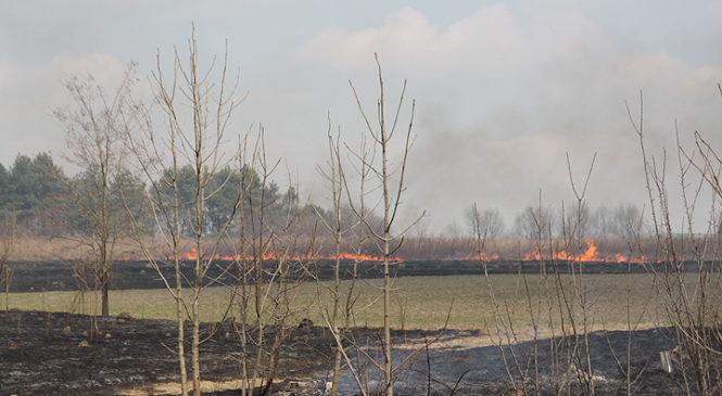 Рятувальники попереджають про небезпеку пожеж на відкритих територіях