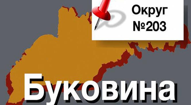 203 виборчий округ. Результати виборів та хто переміг