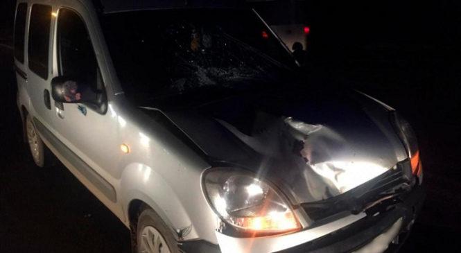 У Коровії на пішохідному переході автомобіль збив 18-річну дівчину