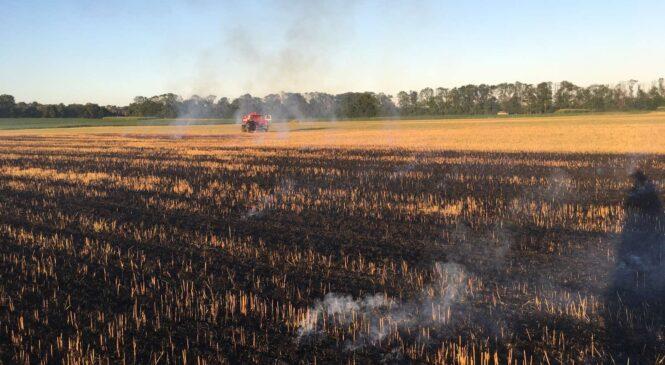 Служба порятунку у Глибоцькому р-ні попереджає про небезпеку пожеж у екосистемах