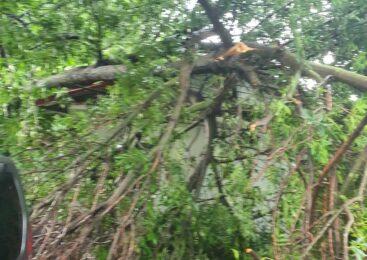 Раптовий буревій, який пройшовся сьогодні Буковиною, не оминув і Глибоччину