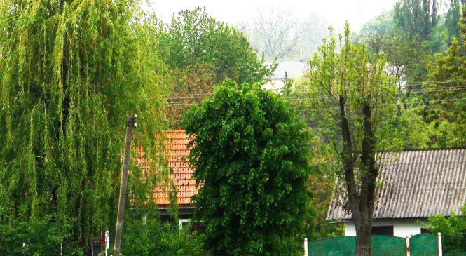 У Глибоці по вулиці Буковинського Віче продається будинок