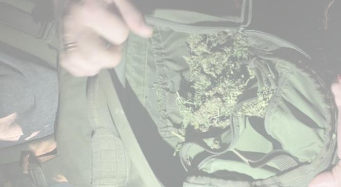 Буковинець намагався перетнути митний кордон  України з повним рюкзаком марихуани – його позбавлено волі майже на 7 років